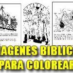 IMÁGENES BÍBLICAS PARA COLOREAR