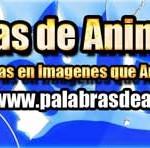 Nuevo Sitio: Palabras de Animo.com