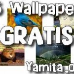 15 WALLPAPERS CRISTIANOS GRATIS