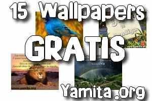 15-wallpapers-gratis